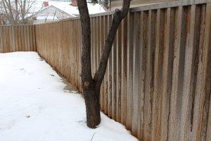 Corten Steel Fence